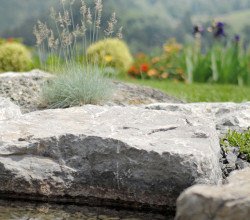 Findling im Wassergarten