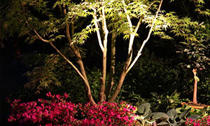gartengestaltung-galerie-beleuchtungen-nx