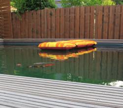 teichpflege-galerie-schwimmteich