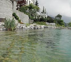wassergarten-rieden-pool-aussicht