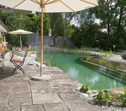 zollikon-terrasse-wassergarten