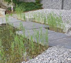 zollikon-wassergarten-bruecke