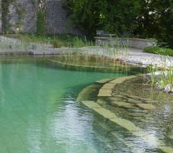 zollikorn-wassergarten-wasser