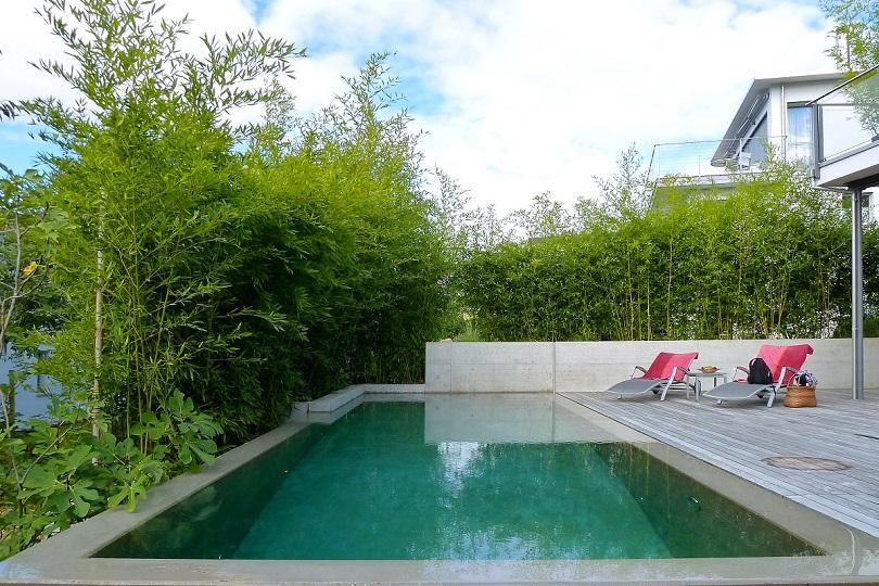 Aktivsauerstoff zur Pool-Desinfektion   Egli Garten AG