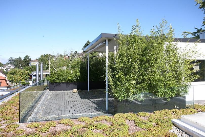 Dachterrasse Richtig Bepflanzen Egli Garten